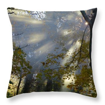 Sunbeam Morning Throw Pillow by Dianne Cowen