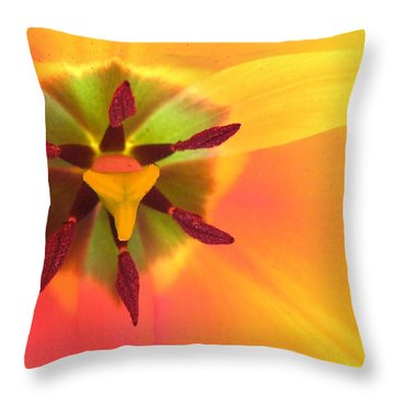 Sunburst 2 Throw Pillow