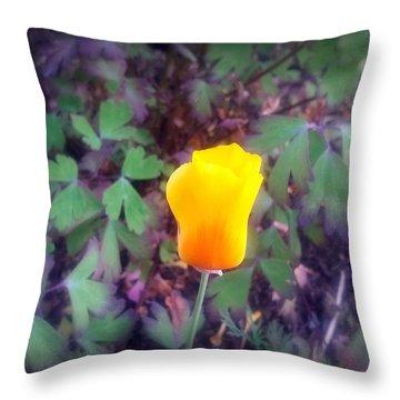 Sunburst Throw Pillow by Heather L Wright