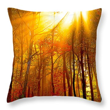 Sunburst In The Forest Throw Pillow by Randall Branham