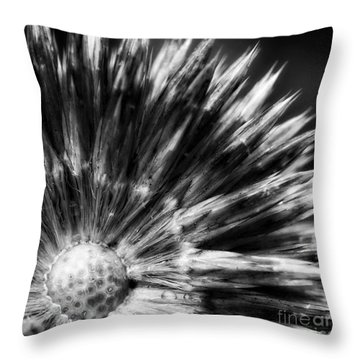 Throw Pillow featuring the photograph Sunburst by Inge Riis McDonald