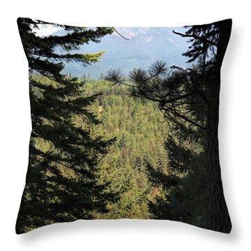 Suncadia Throw Pillow by Marti Green