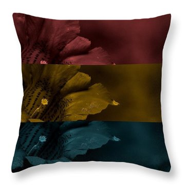 Sunday Bloody Sunday Throw Pillow by Holley Jacobs