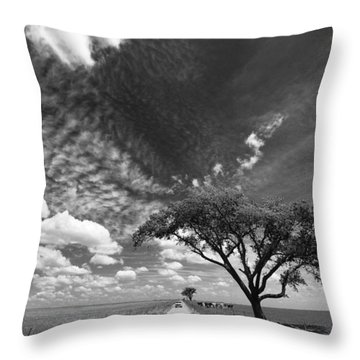 Sunday Drive 3 Throw Pillow