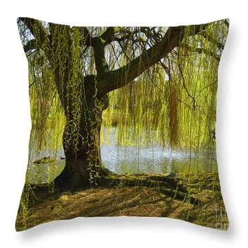 Sunday In The Park Throw Pillow