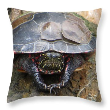 Sunday Morning In The Turtle Pond Throw Pillow by Rita Mueller