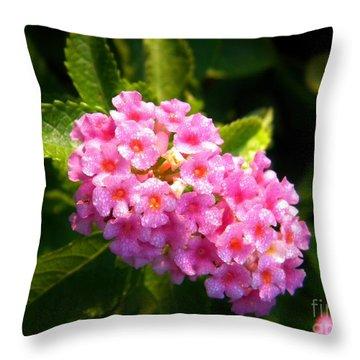 Sunday Morning Pink Throw Pillow