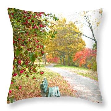 Sunday Peace Throw Pillow by Barbara McDevitt