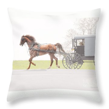 Throw Pillow featuring the photograph Sunday Ride by Dyle   Warren