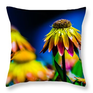Sundaze Flame Strawflower Throw Pillow