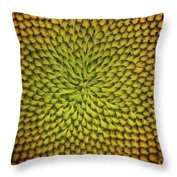 Sunflower Sundial Throw Pillow