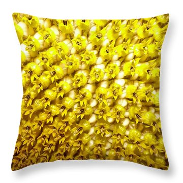 Sunflower 1 Throw Pillow