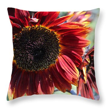 Sunflower 15 Throw Pillow