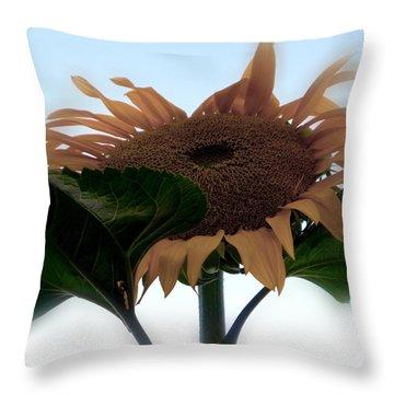 Sunflower 4 Throw Pillow