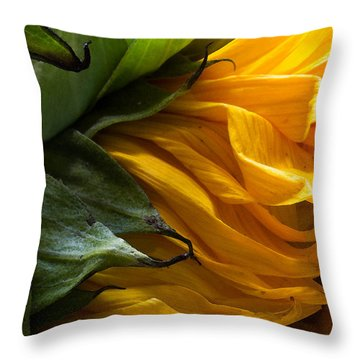 Sunflower 5 Throw Pillow by Mary Bedy