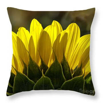 Sunflower Abstract By Nature Square Throw Pillow