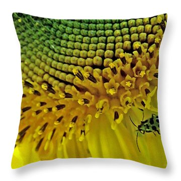 Sunflower And Beetle Throw Pillow