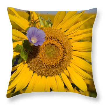 Throw Pillow featuring the photograph Sunflower And Friend by Chris Scroggins