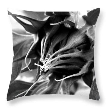 Throw Pillow featuring the photograph Sunflower Beginning by Sandi OReilly