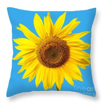 Sunflower Blue Sky Throw Pillow
