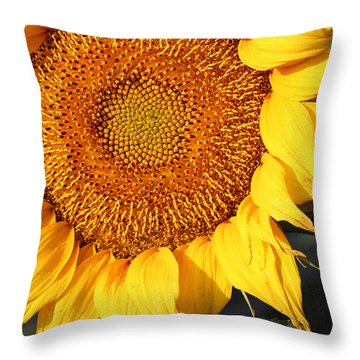 Sunflower - Closeup Throw Pillow