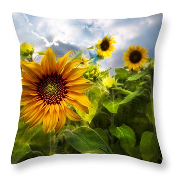 Sunflower Dream Throw Pillow by Debra and Dave Vanderlaan