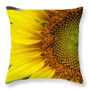 Sunflower Face Throw Pillow by Shelly Gunderson