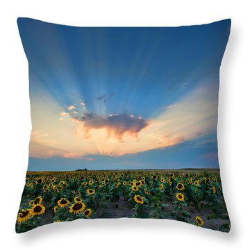 Sunflower Field At Sunset Throw Pillow