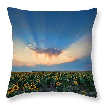Sunflower Field At Sunset Throw Pillow by Jim Garrison