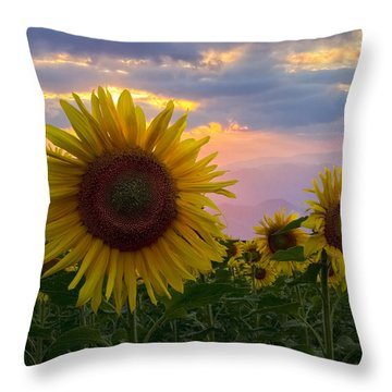 Sunflower Field Throw Pillow by Debra and Dave Vanderlaan