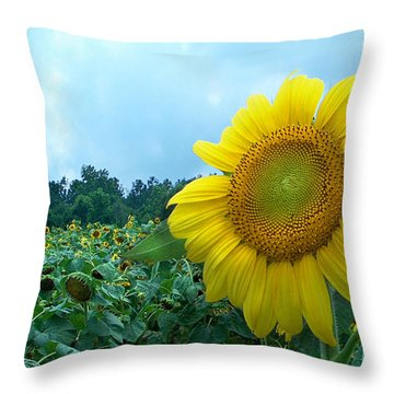 Sunflower Field Of Yellow Sunflowers By Jan Marvin Studios  Throw Pillow