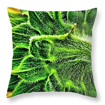 Sunflower Fuzzy Back Throw Pillow by Margaret Newcomb