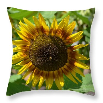 Sunflower Glory Throw Pillow by Luther Fine Art
