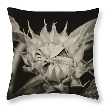 Sunflower Grand Opening Throw Pillow by Wilma  Birdwell