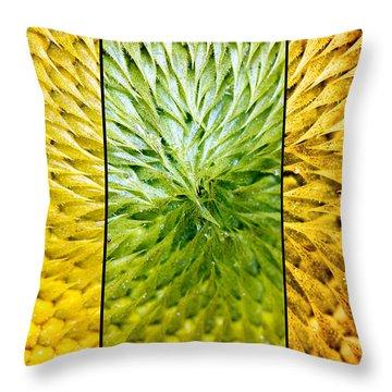 Sunflower Heart Triptych Throw Pillow by Lisa Knechtel