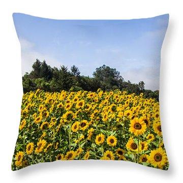 Sunflower Horizon Number 2 Throw Pillow