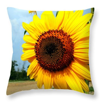 Sunflower In Summer Throw Pillow
