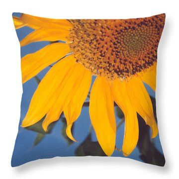 Sunflower In The Corner Throw Pillow by Heather Kirk