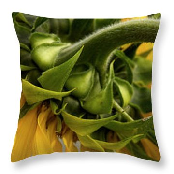 Sunflower In The Hubble Cosmos Throw Pillow