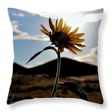 Throw Pillow featuring the photograph Sunflower In The Sun by Matt Harang