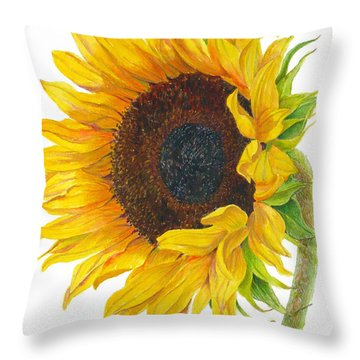 Sunflower - Helianthus Annuus Throw Pillow