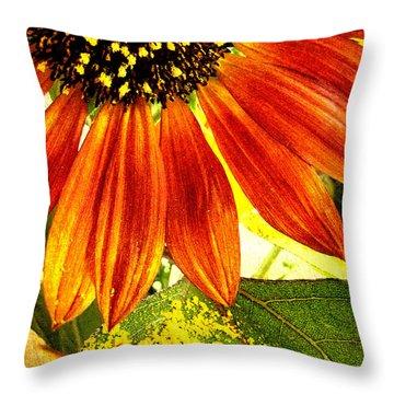 Sunflower Memories Throw Pillow by Kathy Bassett