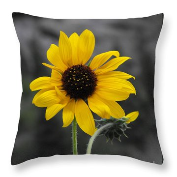 Sunflower On Gray Throw Pillow by Rebecca Margraf