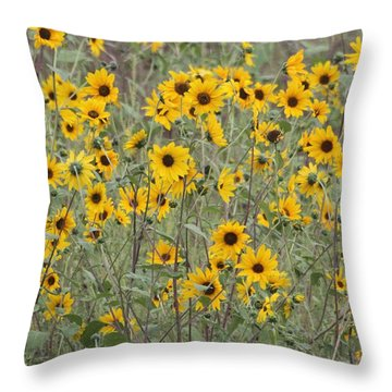 Sunflower Patch On The Hill Throw Pillow by Tom Janca