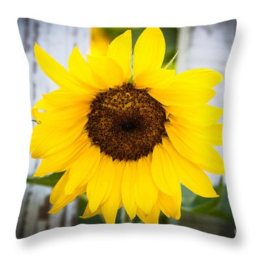 Sunflower Peak Thru Throw Pillow