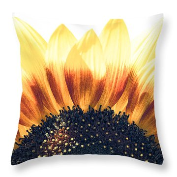 Sunflower Rising Throw Pillow by Wade Brooks