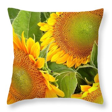 Sunflower Smiles Throw Pillow by Kim Bemis