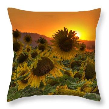 Sunflower Sun Rays Throw Pillow