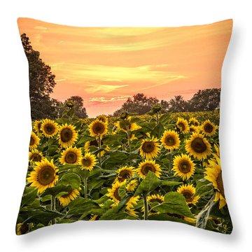 Throw Pillow featuring the photograph Sunflower Sunset by Steven Bateson