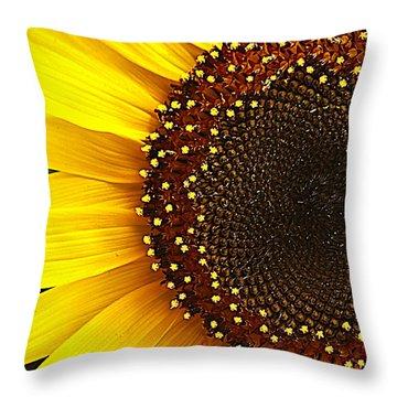 Sunflower Throw Pillow by Tammy Schneider